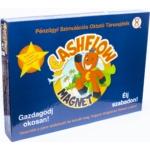 CashFlow Magnet társasjáték